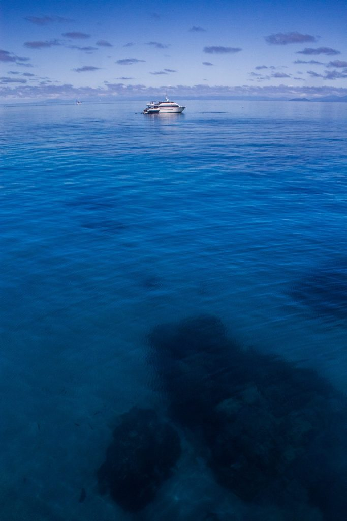 The Great Barrier Reef. Photo by Teddy Fotiou.